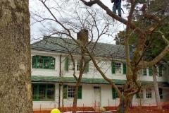 Lusk Tree Trimming 1